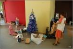 Varièté réunionaise de sapin de Noël