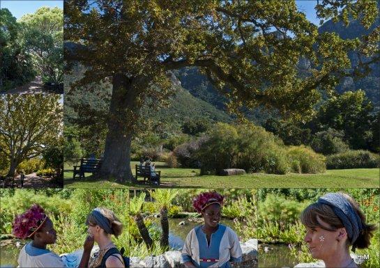 Au Kirstenbosch National Botanical Garden