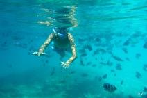 Sous l'eau, on n'est pas tout seul!