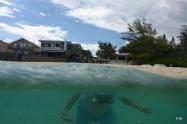 Sur et sous l'eau