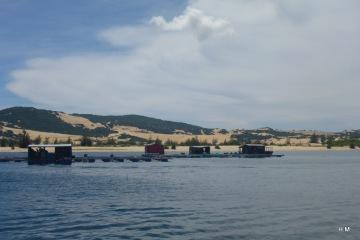Whale_Island_