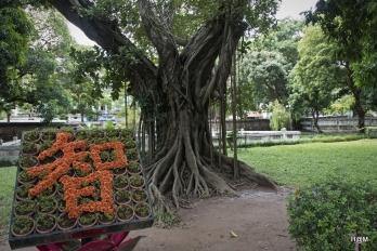Hanoi_283 copy