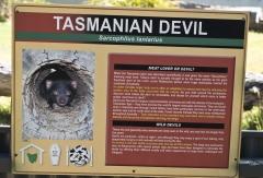 Tasmanie_Dec 2015_434