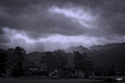 new-zealand_6937-bw_cold
