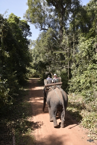 Sud_Laos_janvier2017_017