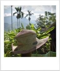 On a retrouvé le chapeau de Sophie!