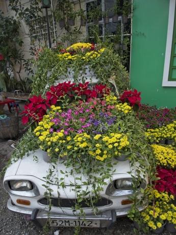 Une Ami 6, sans doute la seule du Vietnam, reconnaissable sous les fleurs