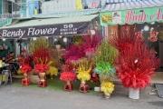 Cho Hoa Ho Thi Ki 2021-02-06-09-02-06