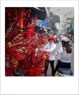 Cho Hoa Ho Thi Ki 2021-02-06-09-16-07